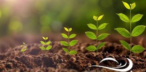 Secretaria de Meio Ambiente de Corumbaíba começa a fazer Licenciamento Ambiental