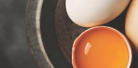 Com mais de 50 nutrientes, ovo tem benefícios valiosos para a saúde