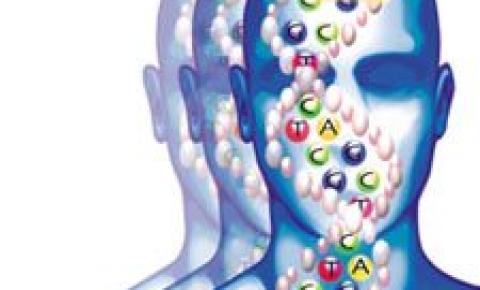 Estudos apontam que vício em drogas pode ser hereditário