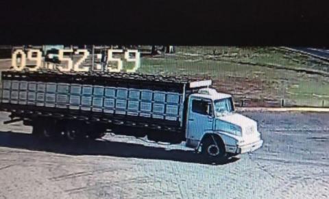 Suspeitos de roubo de gado e tentativa de latrocínio são presos, em Goiás