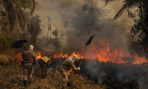 Equipe de voluntários leva tecnologia ao Pantanal para denúncias de queimadas