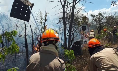 Incêndio já atingiu 26% da Chapada dos Veadeiros